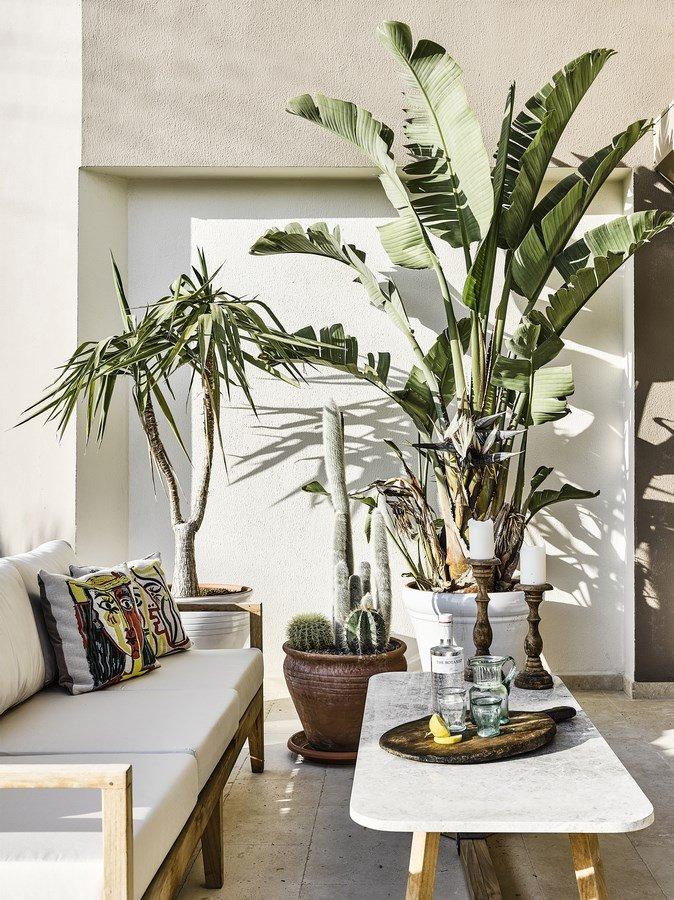 Khu vườn nhỏ xinh tràn ngập trong tông màu trắng vốn là điển hình của phong cách Scandi