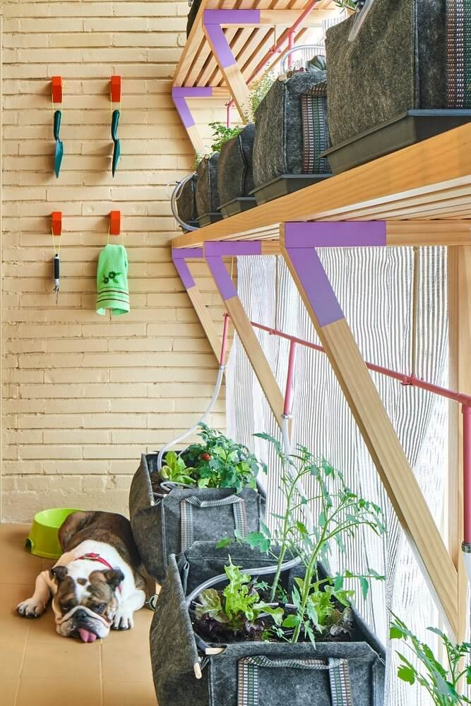Hệ thống cây xanh ngăn nhiệt mùa hè vào trong căn hộ