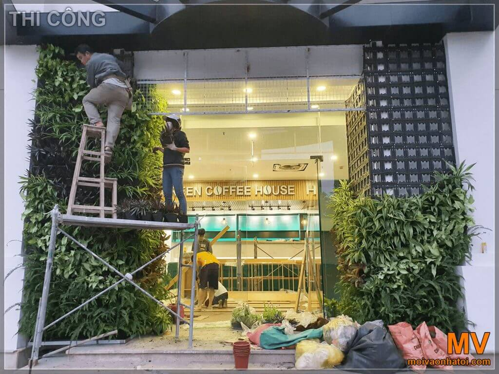 quá trình lắp đặt hệ thống cây xanh của cổng chính quán coffee hà nội
