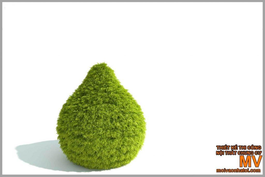 mẫu cắt tỉa cây hình khối đẹp
