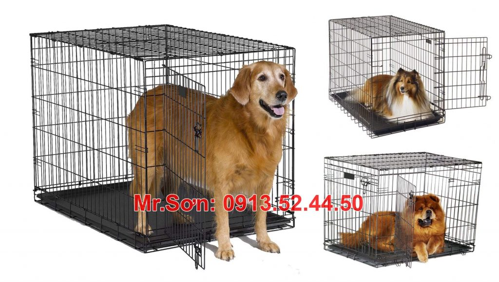 Cages transporting dogs