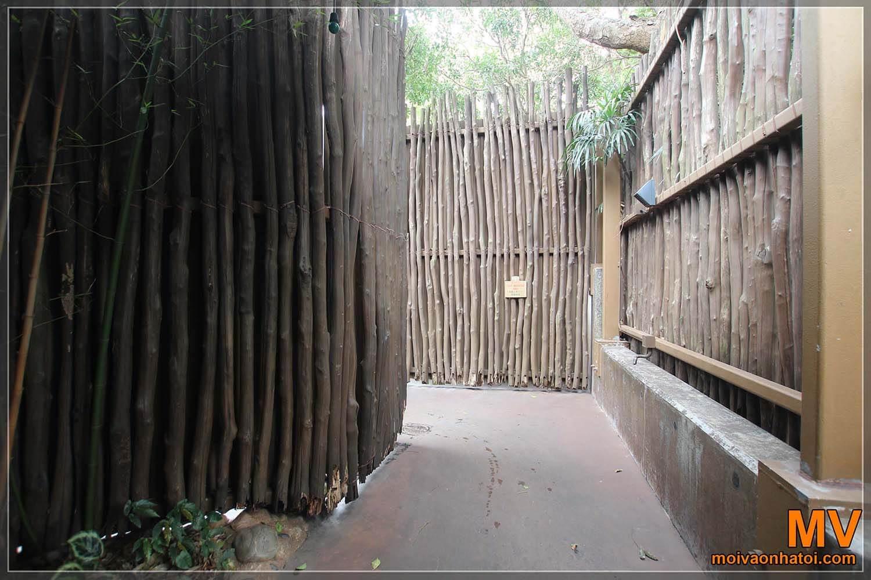 Mẫu thiết kế nhà tre mái lá
