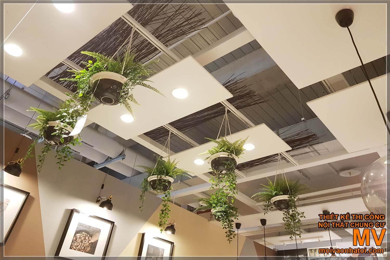 Trang trí quán cafe nhỏ cây xanh - Không gian đẹp